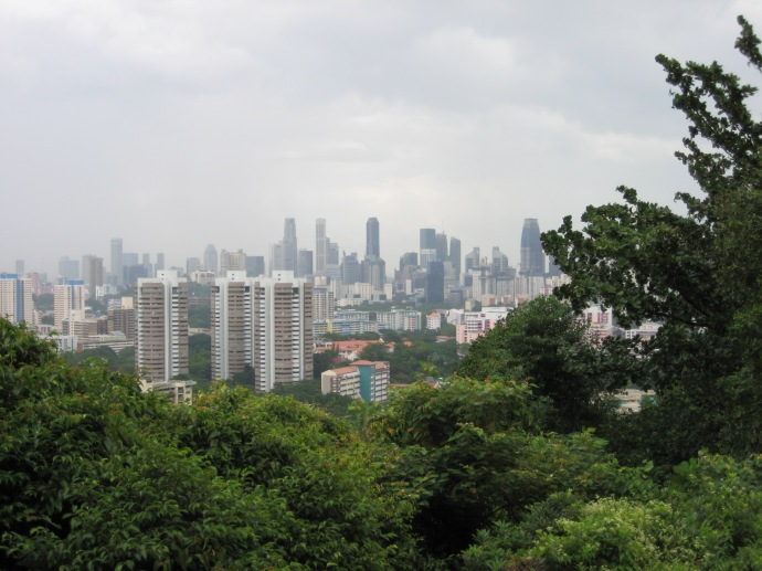 View from Mt. Faber Park