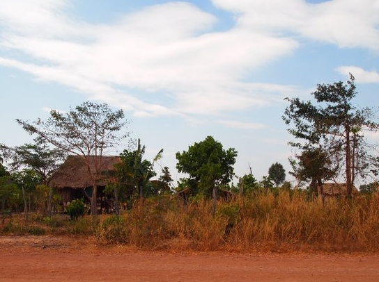 red dirt roads and houses on stilts