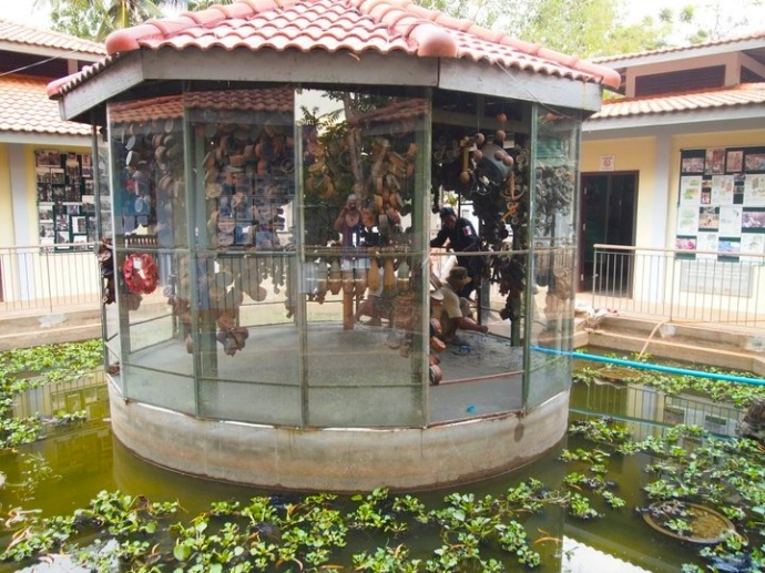 Cambodian Land Mine Museum