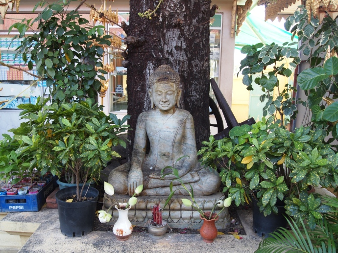 a Buddha in the garden