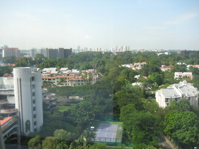 the view of Singapore from my hotel room window
