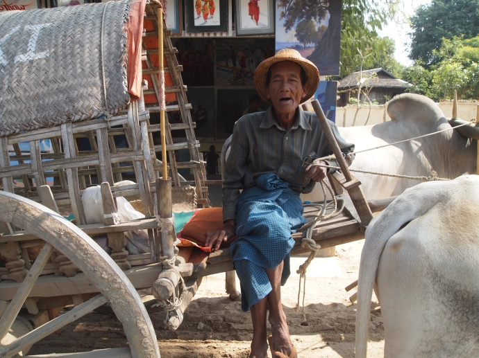 our oxcart driver