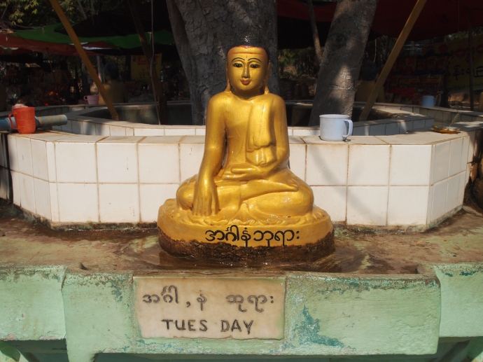 the Tuesday Buddha