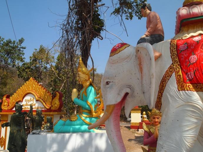 elephant and nat