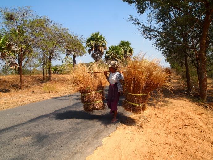 ladies carrying bundles of sticks