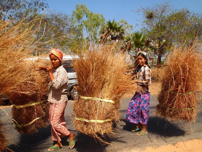 Burmese ladies at work
