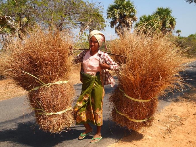 Burmese ladies