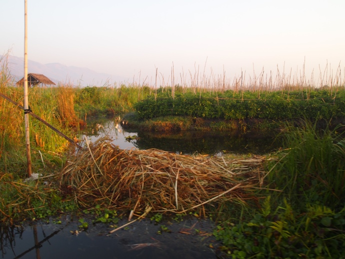 waterways of Inle Lake