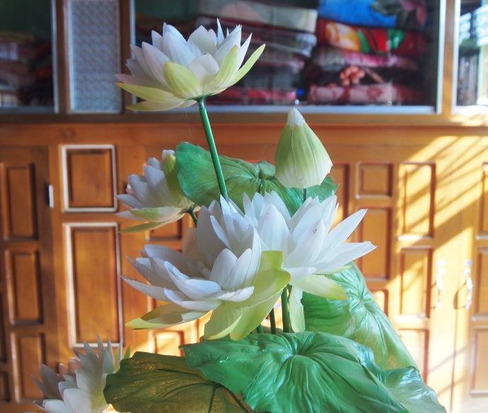 lotus flowers at Nga Phe Chaung Monastery