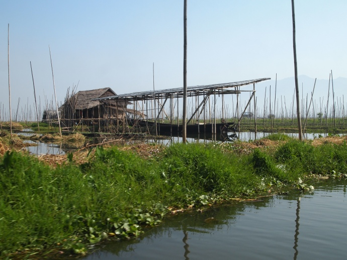 Inle Lake's floating gardens