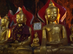 Buddhas aplenty