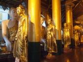 hall of Buddhas